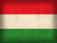 Hungary Flag Art - Hungary Flag Vintage Distressed Finish by Design Turnpike