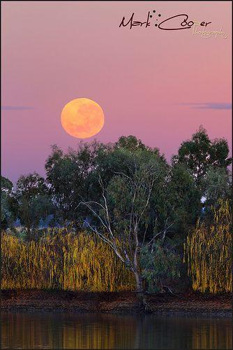 Murrumbidgee Super Moon