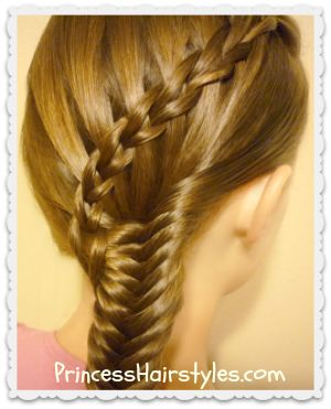 Scissor Waterfall Braid and Fishtail Braid Hairstyle