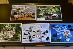 """Comme promis, voici les fichiers PDF à télécharger du jeu """"où vis-tu?"""" 5 thèmes (avec 4 fichiers chacun) : la savane, la jungle amazonienne, la forêt, le pôle nord et l'océan. Le jeu permet de proposer diverses activités : - découverte des animaux et..."""