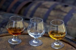 Not Sure Which Bottle to Buy? A Guide to Popular Rum Brands: How to Choose Rum