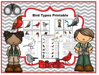 Bird Types Printable16 vocabulary cards16 picture cardsNumber cards 1-12Check off list for birdsBlack & White Pages2 pages of writing in birds nameTrace the birds names14 pages of color & trace the birds name