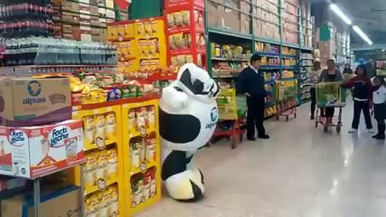 The dancing cow is at it again!
