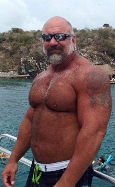 Daddiesbearsmatureshairyoldersenior  Daddy Bear, Hot -1354