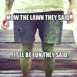 513d998e300129fa60943db308eb5ba3 mow the lawn lawn care 58 best lawn humour images on pinterest funny stuff, funny pics,Lawn Memes
