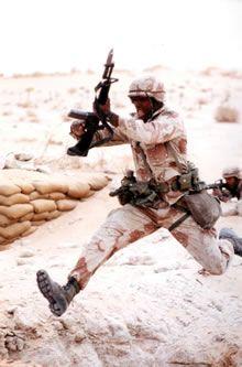operation desert storm | ... Photographer Chronicles Operation Desert Storm | Veterans Today