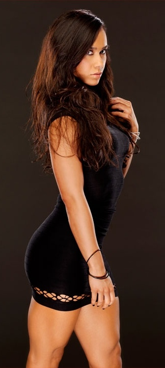 One of the WWE Divas that came up through the ranks of FCW/NXT, AJ Lee