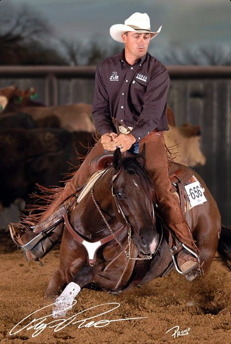 Cutting western quarter paint horse appaloosa equine tack cowboy cowgirl rodeo ranch show pony pleasure barrel racing pole bending saddle bronc gymkhana