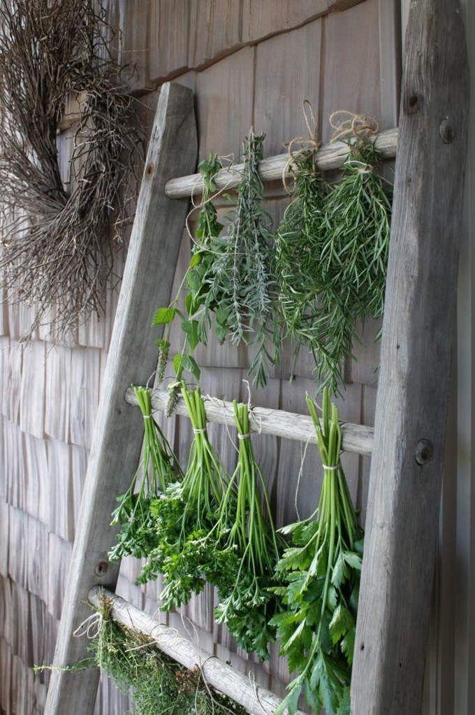 Sécher les herbes aromatiques