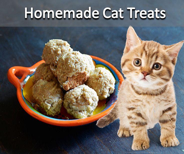 Homemade Cat Treats Cat Treats Homemade Homemade Cat Homemade Cat Food