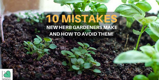 Master these simple and practical tips for herb gardening and you'll be using your own fresh herbs like Mario Batali in no time.