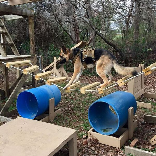 34 Simple Diy Playground Ideas For Dogs Dog Playground Dog Cage