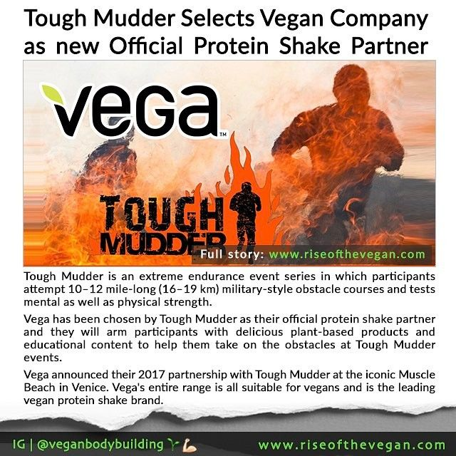 A sign of the changing times! Vega have announced their 2017 partnership with Tough Mudder at the iconic Muscle Beach in Venice. _ Vega's entire range is all suitable for vegans and is the leading vegan protein shake brand. _ Tough Mudder is an extreme endurance event series in which participants attempt 1012 mile-long (1619 km) military-style obstacle courses and tests mental as well as physical strength. Vega has been chosen by Tough Mudder as their official protein shake partner and they…