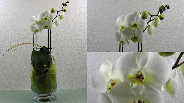 31 besten blumen dekoration selber machen bilder auf pinterest flora deko ideen und garten. Black Bedroom Furniture Sets. Home Design Ideas