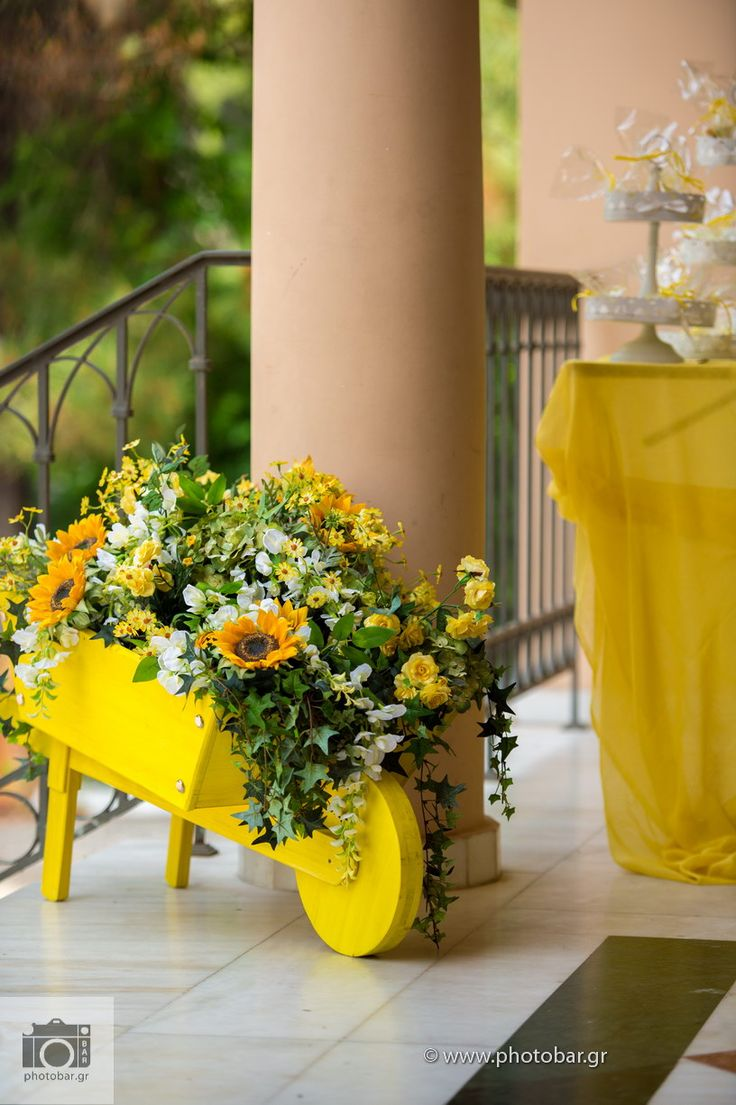 #lemon #garden