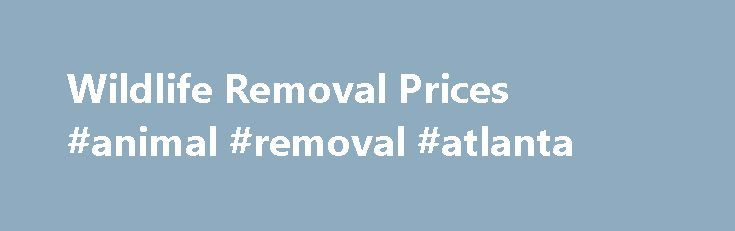 Wildlife Removal Prices #animal #removal #atlanta http://austin.remmont.com/wildlife-removal-prices-animal-removal-atlanta/  # Please Call For an Exact Price Estimate (2017) I'm sorry that I can't list firm prices here. This is a directory of professional nuisance wildlife companies who have met quality guidelines, and every company charges different rates. Click your state on the below map for exact prices in your town. I've searched for the most professional and fair wildlife pros in the…