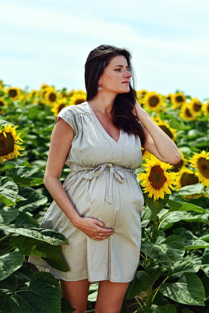 Barbara Maternity Photography • photo by Dalocska - United Photographers • #maternity #sunflower #expectant #pregnant #motherhood #photography