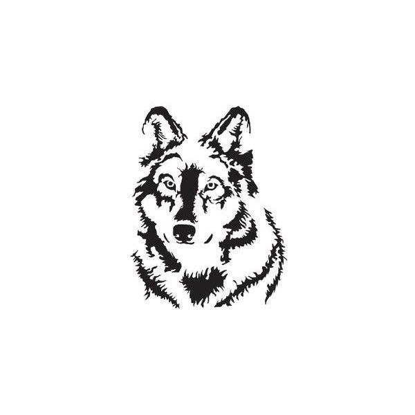 41 best Tiere images on Pinterest | Tiere zeichnen, Tierzeichnungen ...