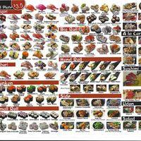 Scanned menu for Sushi Edo