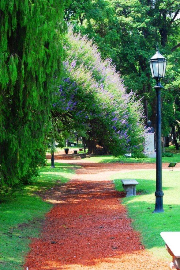 El Rosedal, Jardines de Palermo, Buenos Aires - 513093
