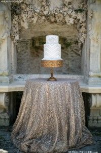 Just throwing it out there...what about a beautiful sequin cloth for the cake table???