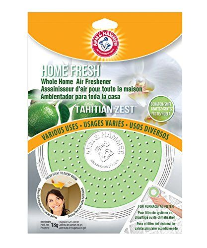 Arm & Hammer AFHF1003 Home Fresh Air Filter Scent, Tahitian Zest