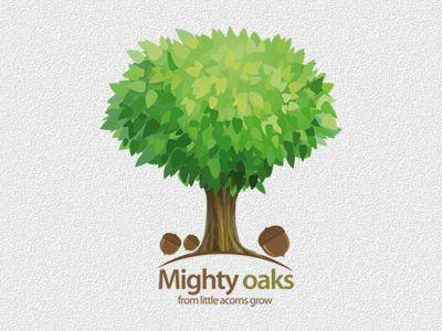 12.23. Mighty Oaks from little acorns grow