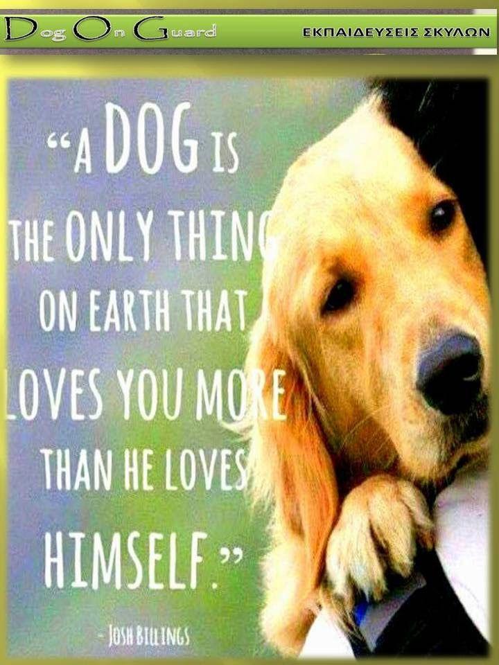 Dog On Guard : ΑΣ ΜΗΝ ΤΟ ΞΕΧΝΑΜΕ ΣΕ ΚΑΘΕ ΕΠΑΦΗ ΜΑΖΙ ΤΟΥΣ !!!!