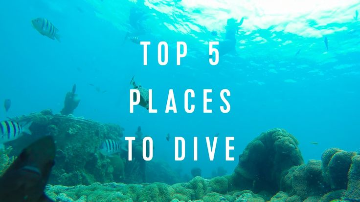 See why #Barbados is featured in this Top 5 Places To Dive spectacular video!