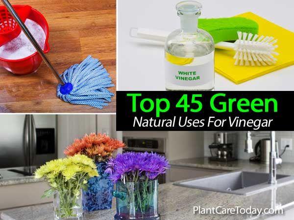 Top 45 Natural Green Uses For Vinegar