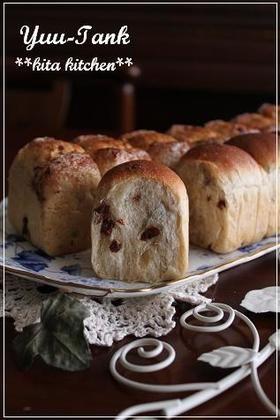 シナモンシュガーバターラム・レーズンパン [Cinnamon Sugar Butter Rum Raisin Bread]