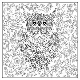 61 best Owl coloring pages images on Pinterest