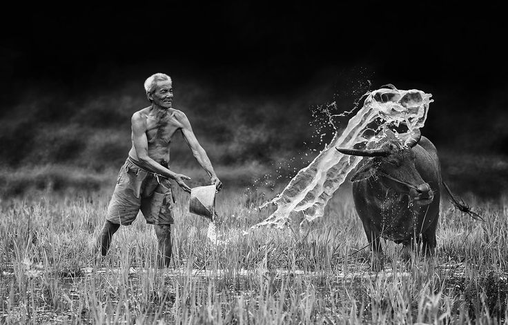 Byur by Herman Damar on 500px