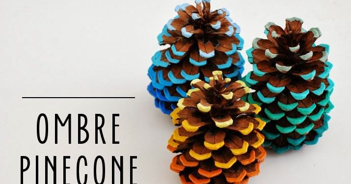 A few years ago I found two very beautiful pinecones around my neighborhood. I took them home and placed them on my bookcase not knowi...