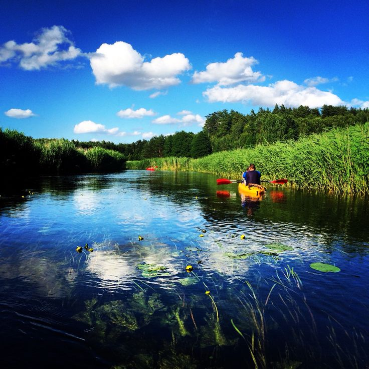 kayaking, Brda river, Bory Tucholskie, Kaszuby, Poland, July 2015