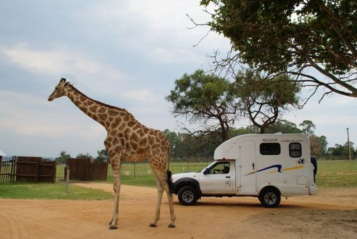 discoverer funx2 - motorhome rental in South Africa