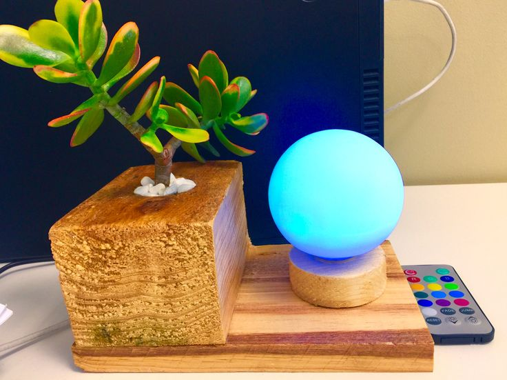 Desk Accessory Planter with Real Succulent Plant and LED Light. Made from recycled wood pallet.