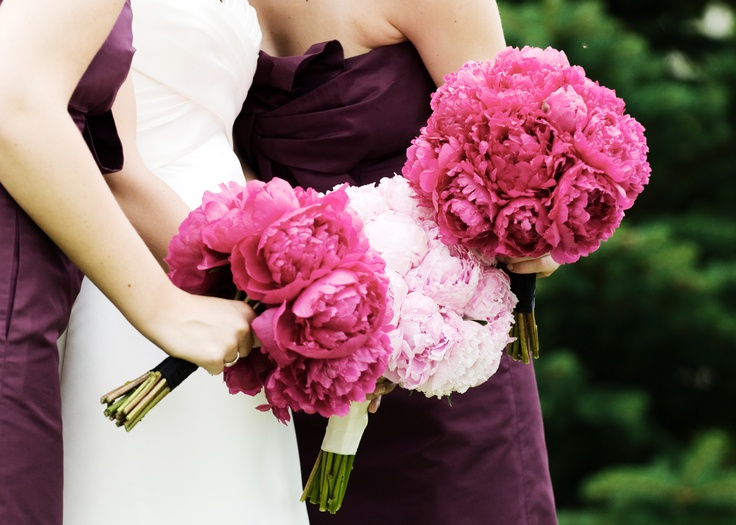 Love pink & eggplant together.  Find both at Smashing Golf & Tennis