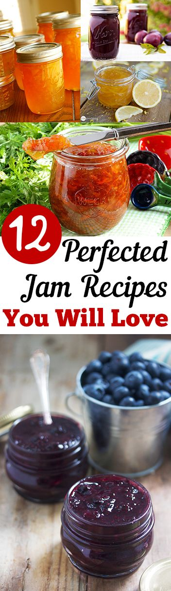 12 Perfected Jam Recipes You Will Love