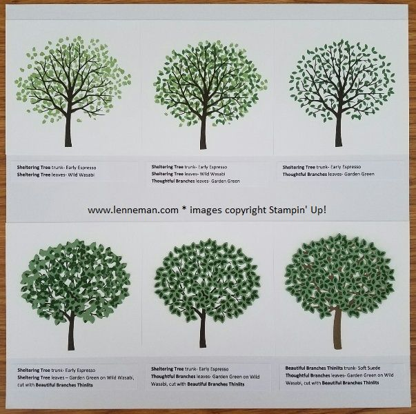 Dena Lenneman shares stamping tips for Thoughtful Branches Bundle, available Aug 2016