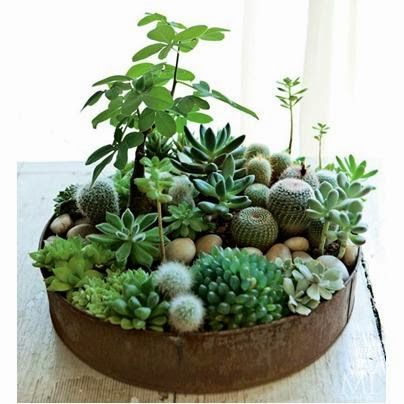 Top 25+ best Mini jardin zen ideas on Pinterest | Mini-jardin ...