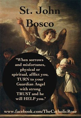 St John Bosco on our Guardian Angels from The Catholic Rose