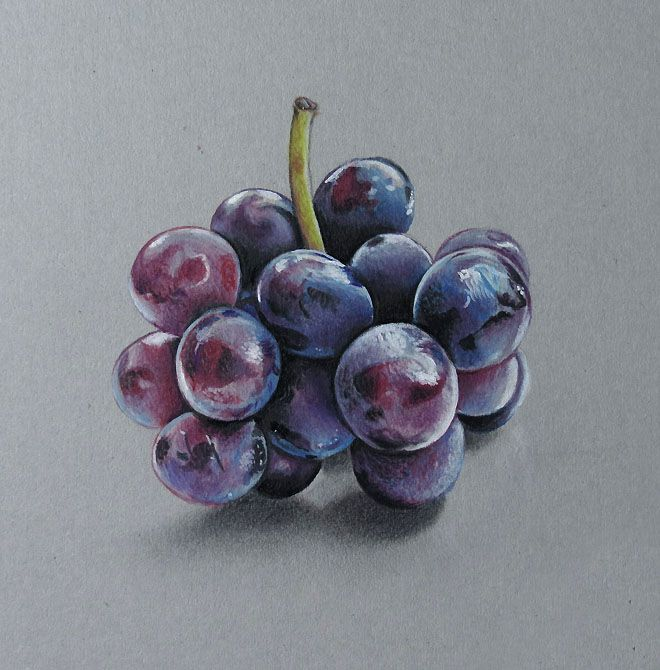 colored pencil drawing fruits