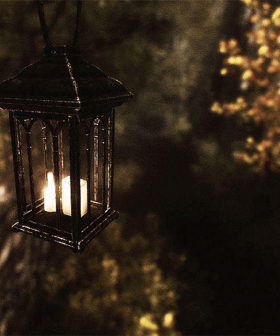 соответствии гифка свет фонаря проведения