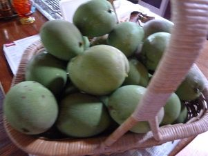 Proudly presenting one of 5 baskets of Mangoes.