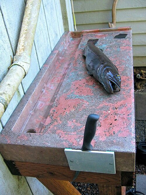 Concrete Fish Cleaning Table Future Projects Fish