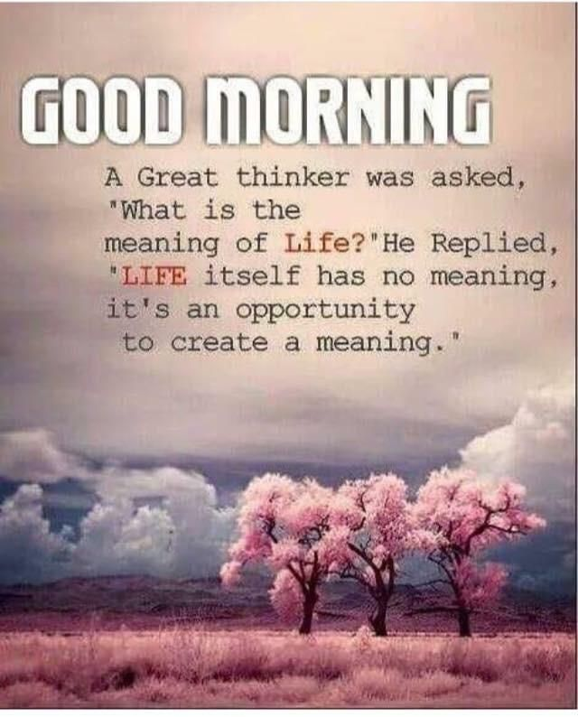 Good News Is That This Morning They >> Pin By Good News Indians On Quotes Good Morning Quotes Morning