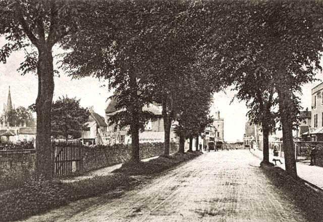 The Avenue, Combe Down, c. 1908