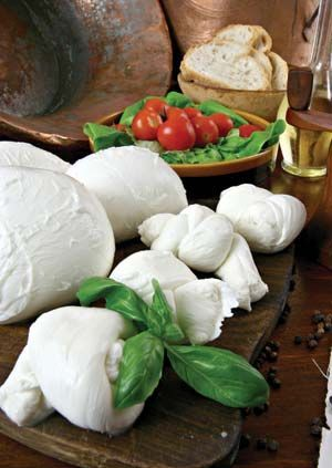 Making Cheese Easy- Recipes for beginners!