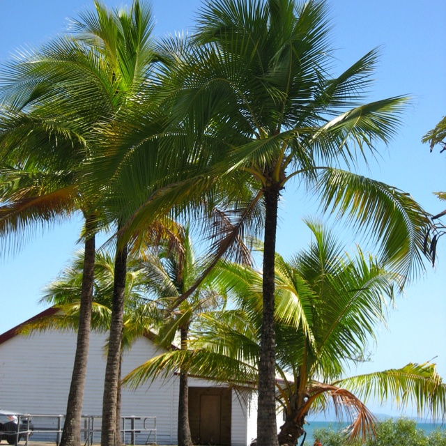 Sugar wharf in Port Douglas